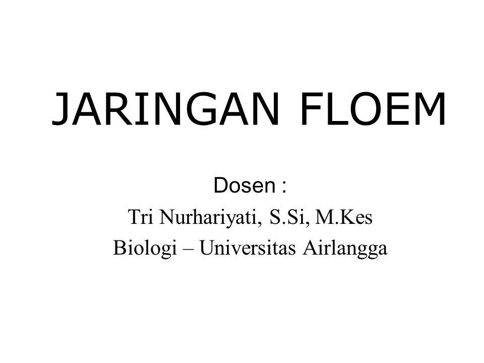 Dosen : Tri Nurhariyati, S.Si, M.Kes Biologi – Universitas Airlangga