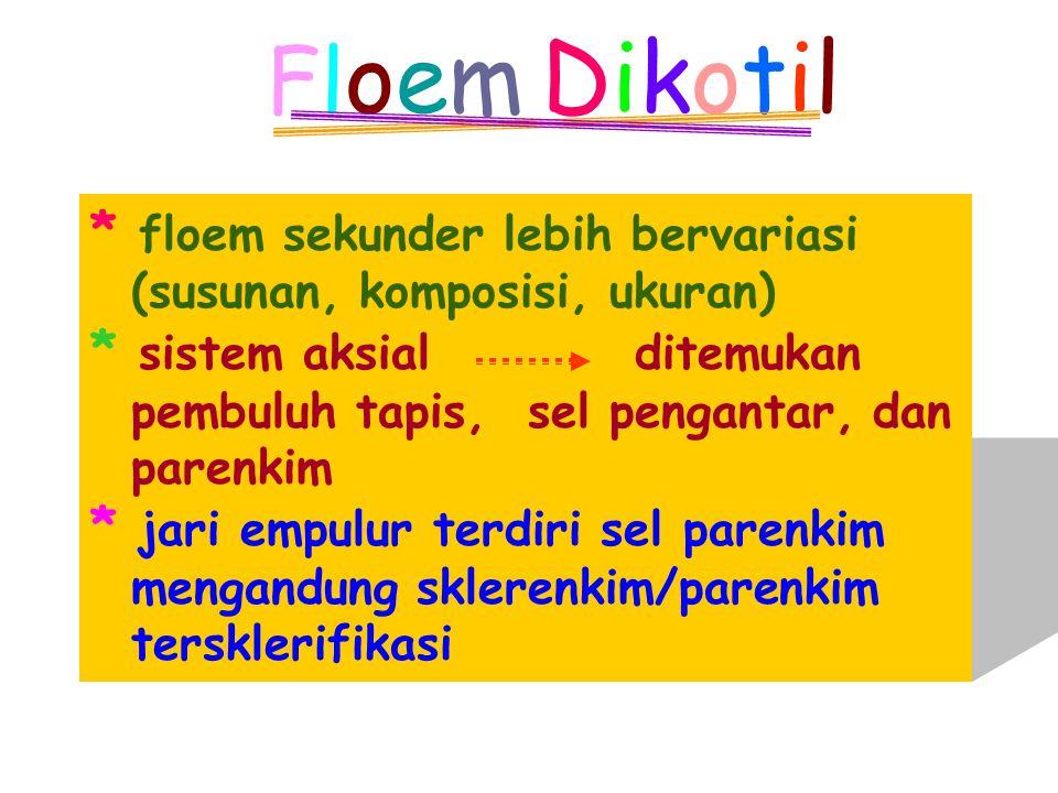 Floem Dikotil * floem sekunder lebih bervariasi