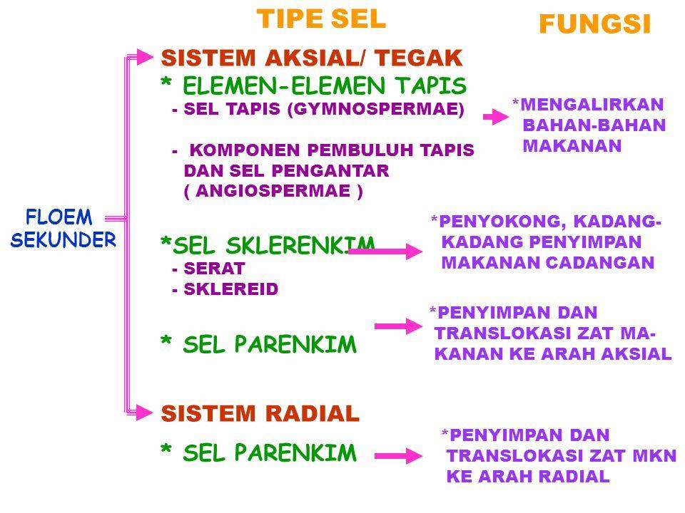 TIPE SEL FUNGSI SISTEM AKSIAL/ TEGAK * ELEMEN-ELEMEN TAPIS