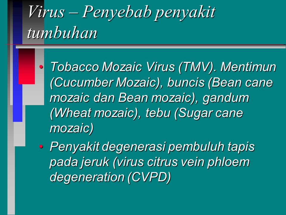 Virus – Penyebab penyakit tumbuhan