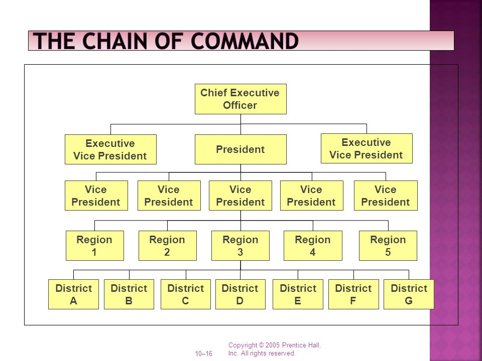 The Chain of Command District A B C D E F G Region 1 2 3 4 5 Vice