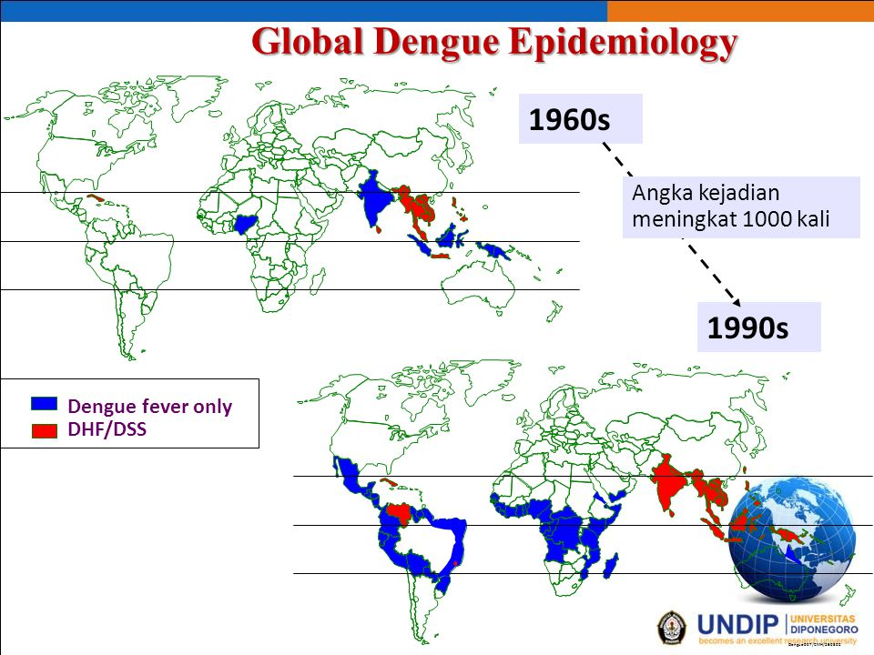 Global Dengue Epidemiology
