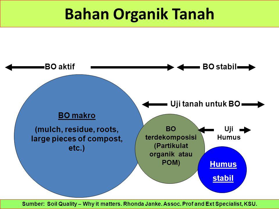 Bahan Organik Tanah BO aktif BO stabil Uji tanah untuk BO BO makro