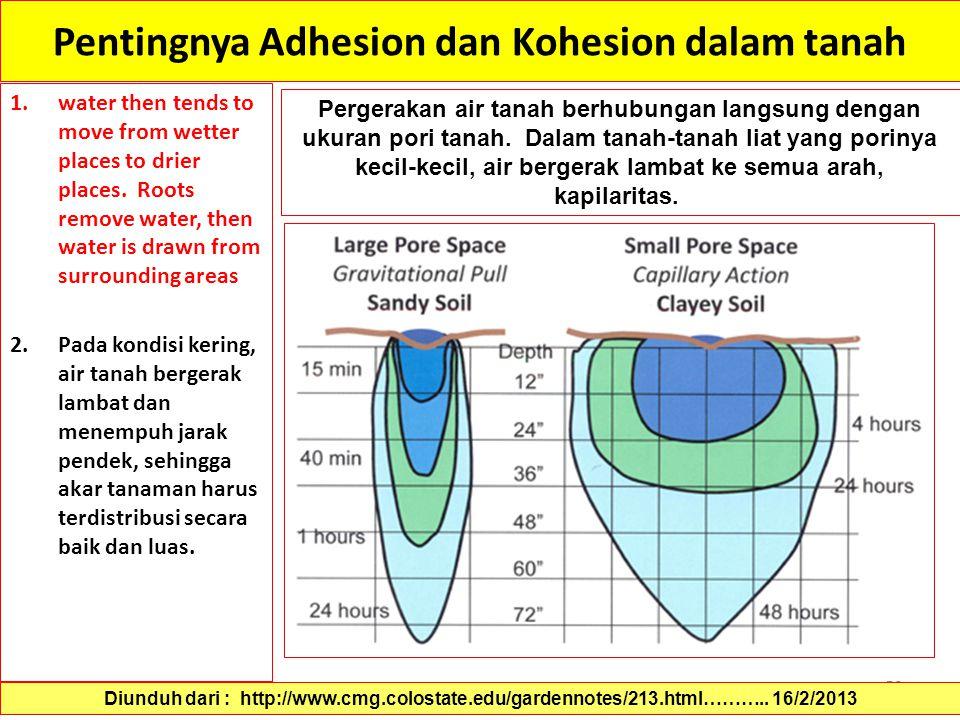 Pentingnya Adhesion dan Kohesion dalam tanah