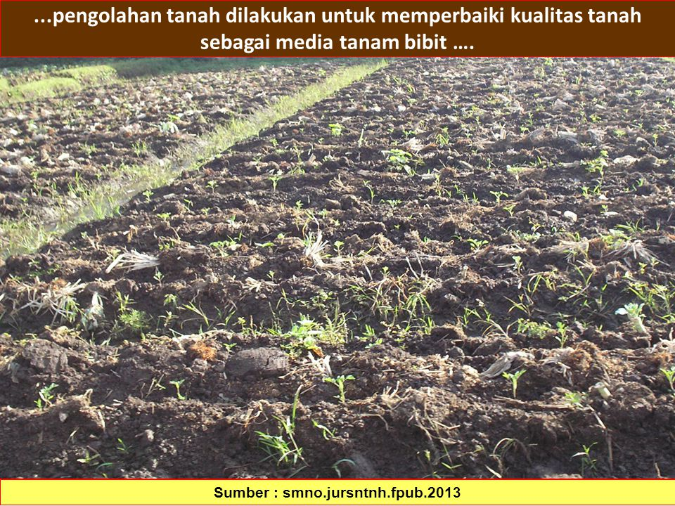 Sumber : smno.jursntnh.fpub.2013