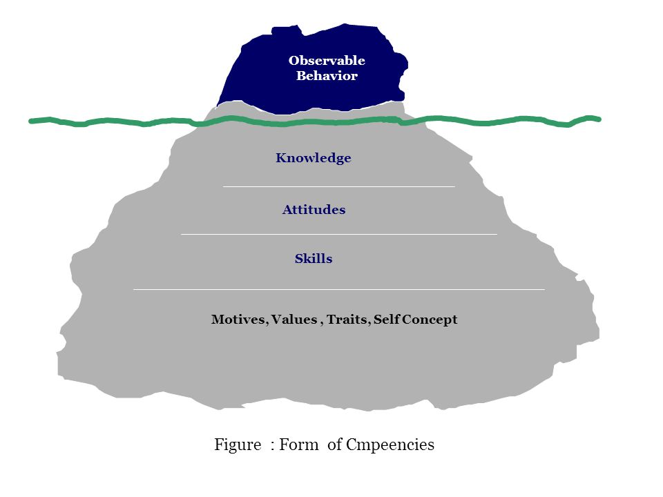 Motives, Values , Traits, Self Concept