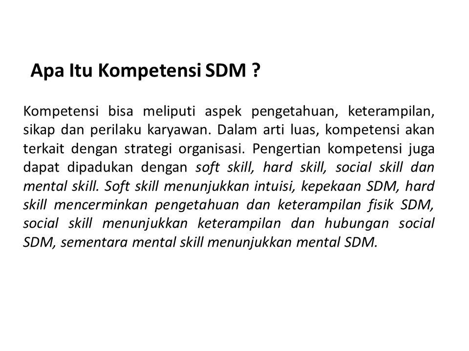 Apa Itu Kompetensi SDM