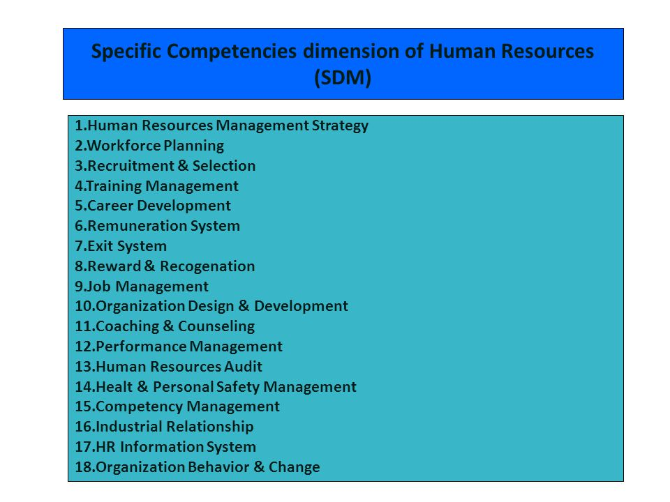 Specific Competencies dimension of Human Resources (SDM)