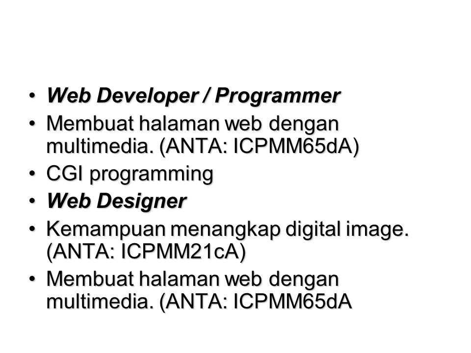 Web Developer / Programmer