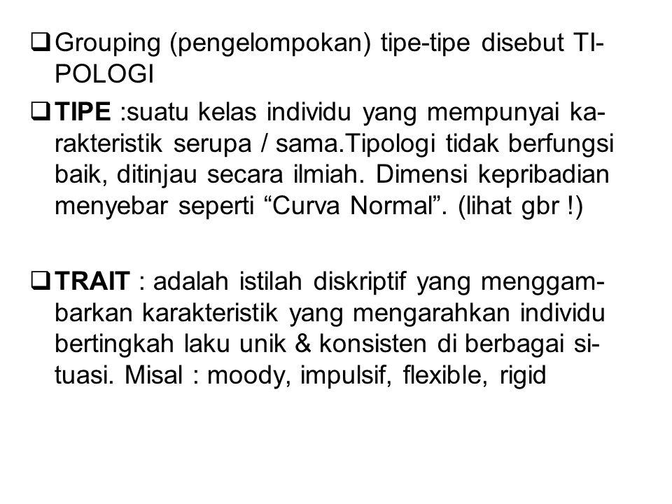 Grouping (pengelompokan) tipe-tipe disebut TI-POLOGI