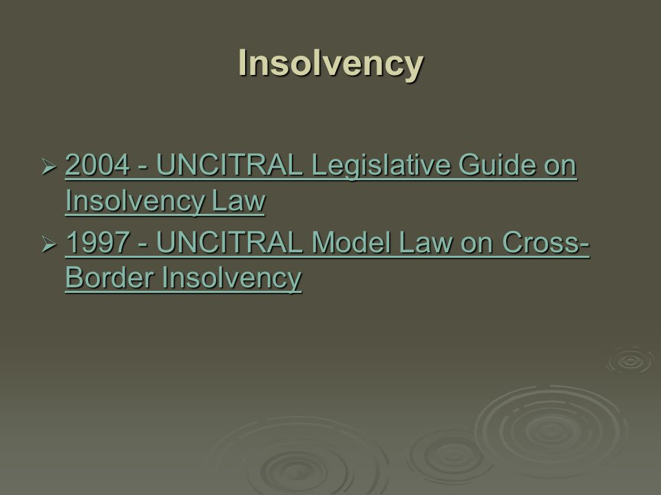 Insolvency 2004 - UNCITRAL Legislative Guide on Insolvency Law