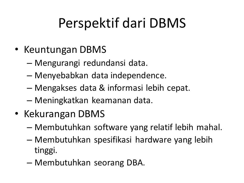 Perspektif dari DBMS Keuntungan DBMS Kekurangan DBMS