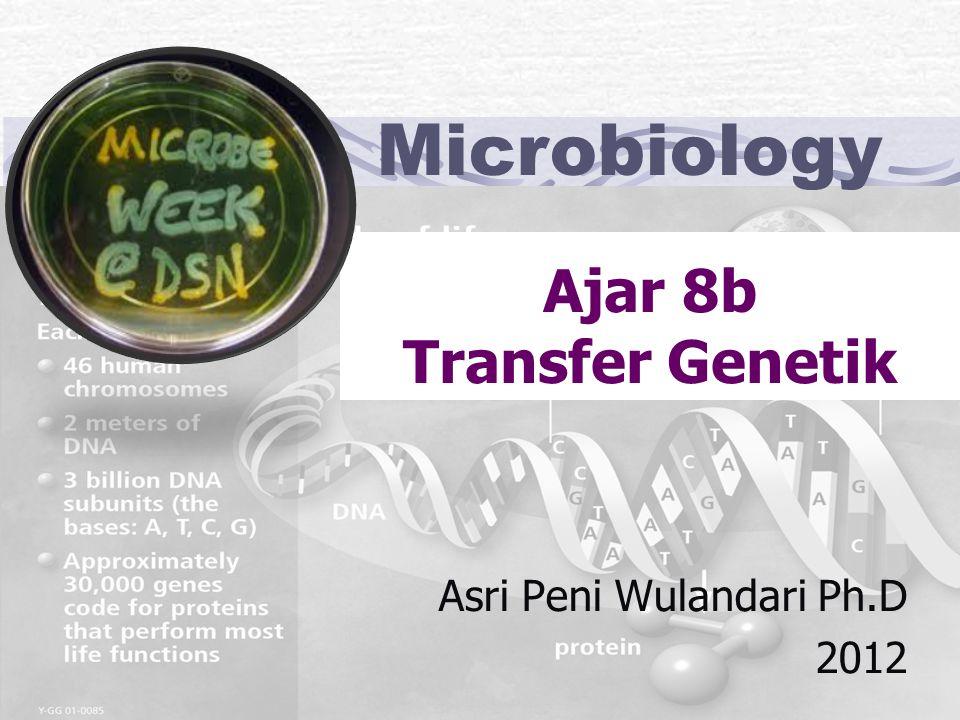 Ajar 8b Transfer Genetik
