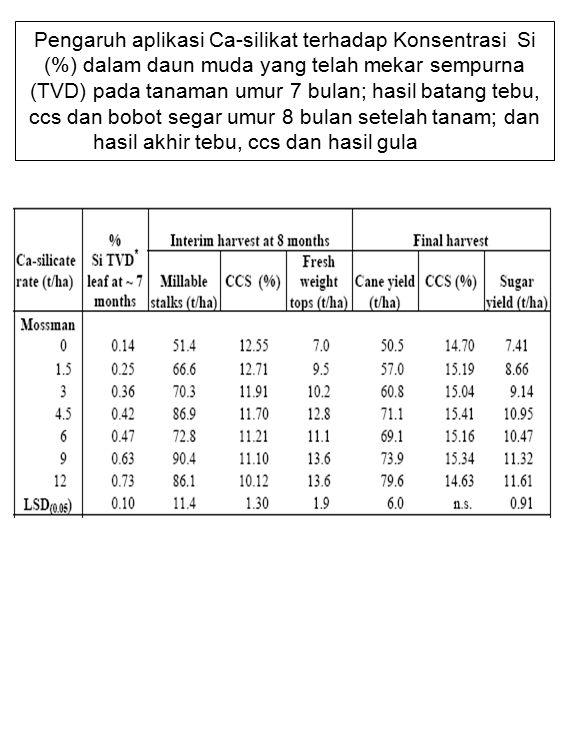 Pengaruh aplikasi Ca-silikat terhadap Konsentrasi Si (%) dalam daun muda yang telah mekar sempurna (TVD) pada tanaman umur 7 bulan; hasil batang tebu, ccs dan bobot segar umur 8 bulan setelah tanam; dan hasil akhir tebu, ccs dan hasil gula