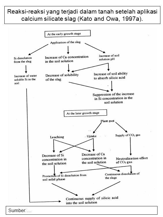 Reaksi-reaksi yang terjadi dalam tanah setelah aplikasi calcium silicate slag (Kato and Owa, 1997a).