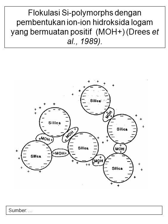 Flokulasi Si-polymorphs dengan pembentukan ion-ion hidroksida logam yang bermuatan positif (MOH+) (Drees et al., 1989).