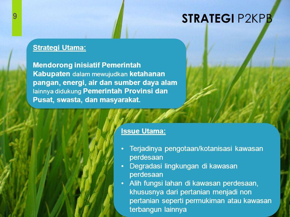 STRATEGI P2KPB 9 Strategi Utama: