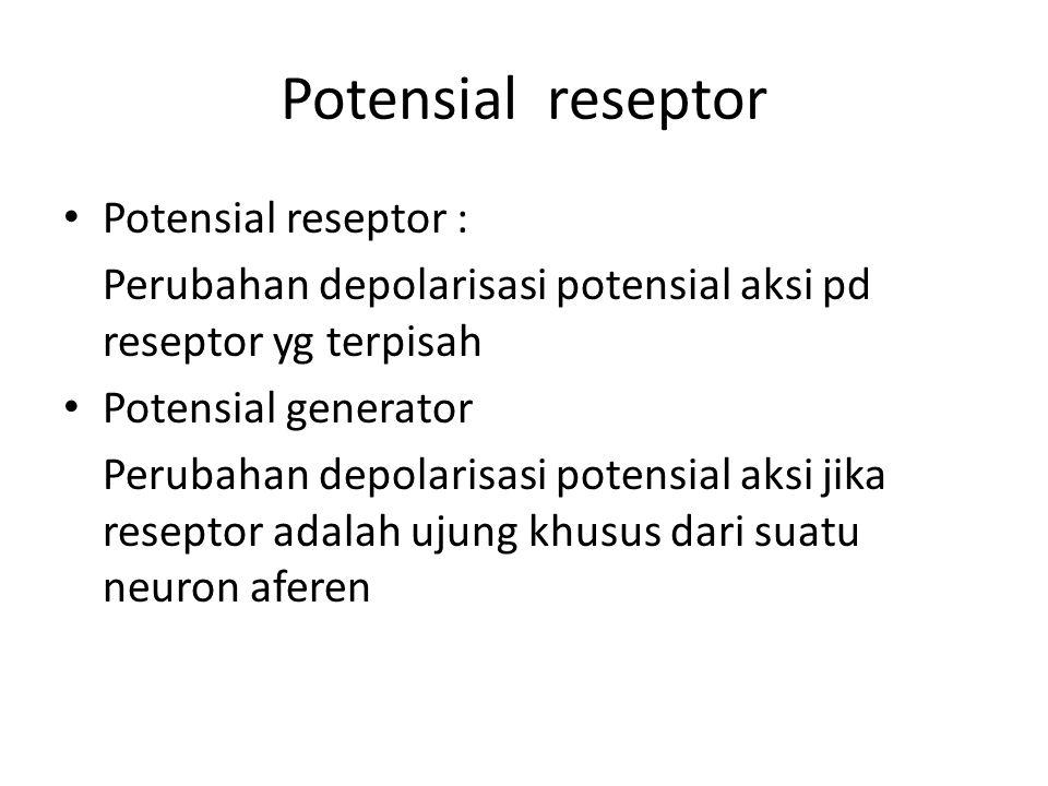 Potensial reseptor Potensial reseptor :