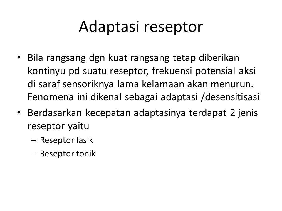 Adaptasi reseptor
