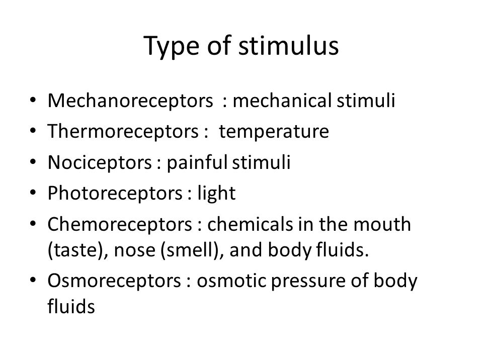 Type of stimulus Mechanoreceptors : mechanical stimuli