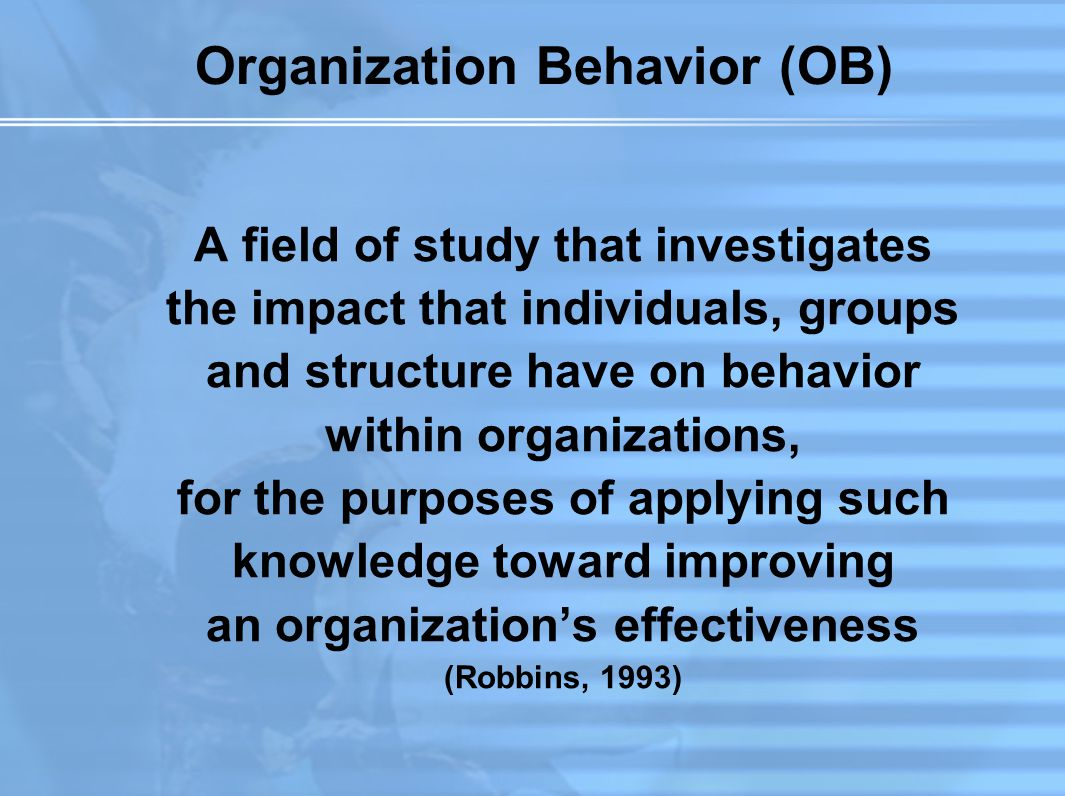 Organization Behavior (OB)