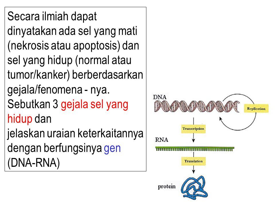 Secara ilmiah dapat dinyatakan ada sel yang mati (nekrosis atau apoptosis) dan sel yang hidup (normal atau tumor/kanker) berberdasarkan gejala/fenomena - nya.
