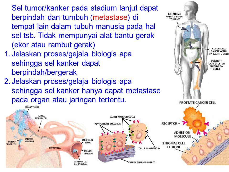Sel tumor/kanker pada stadium lanjut dapat berpindah dan tumbuh (metastase) di tempat lain dalam tubuh manusia pada hal sel tsb. Tidak mempunyai alat bantu gerak (ekor atau rambut gerak)