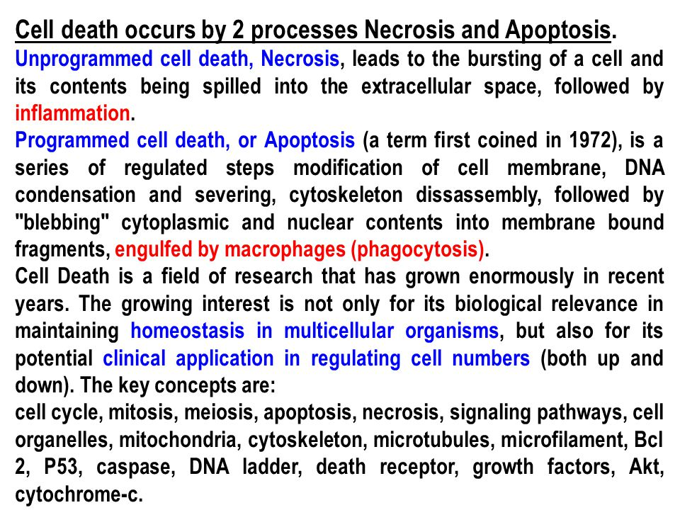 Cell death occurs by 2 processes Necrosis and Apoptosis.