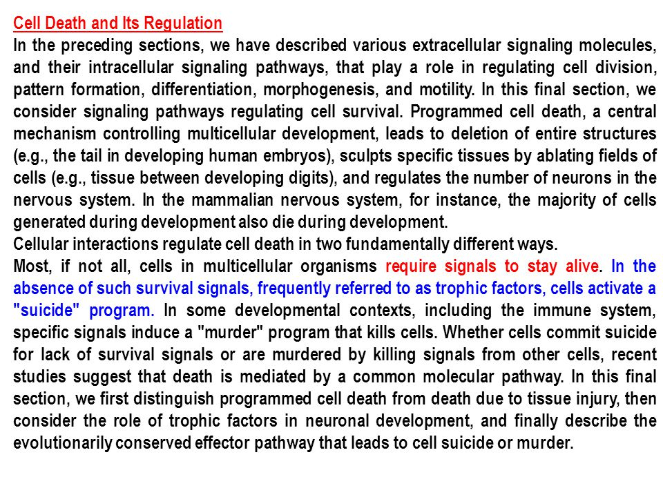 Cell Death and Its Regulation