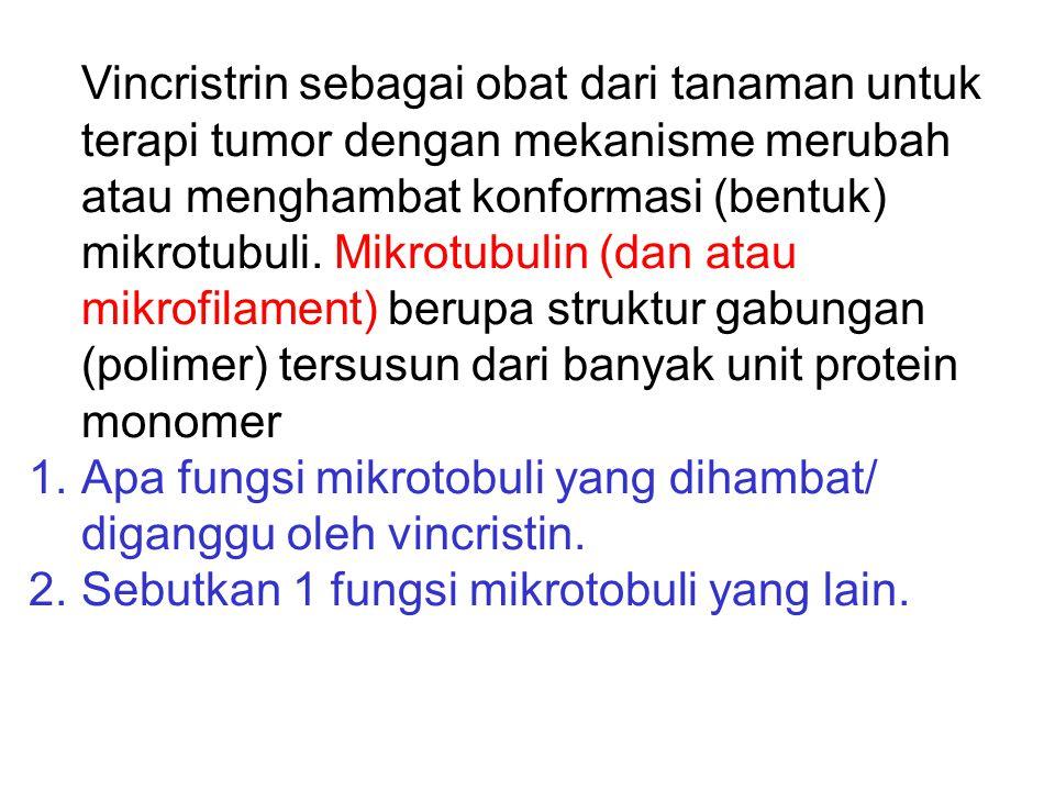 Vincristrin sebagai obat dari tanaman untuk terapi tumor dengan mekanisme merubah atau menghambat konformasi (bentuk) mikrotubuli. Mikrotubulin (dan atau mikrofilament) berupa struktur gabungan (polimer) tersusun dari banyak unit protein monomer