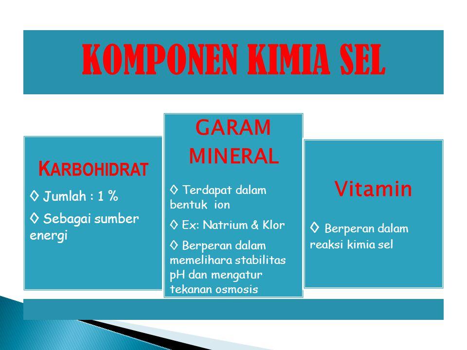 GARAM MINERAL KARBOHIDRAT Vitamin ◊ Jumlah : 1 %