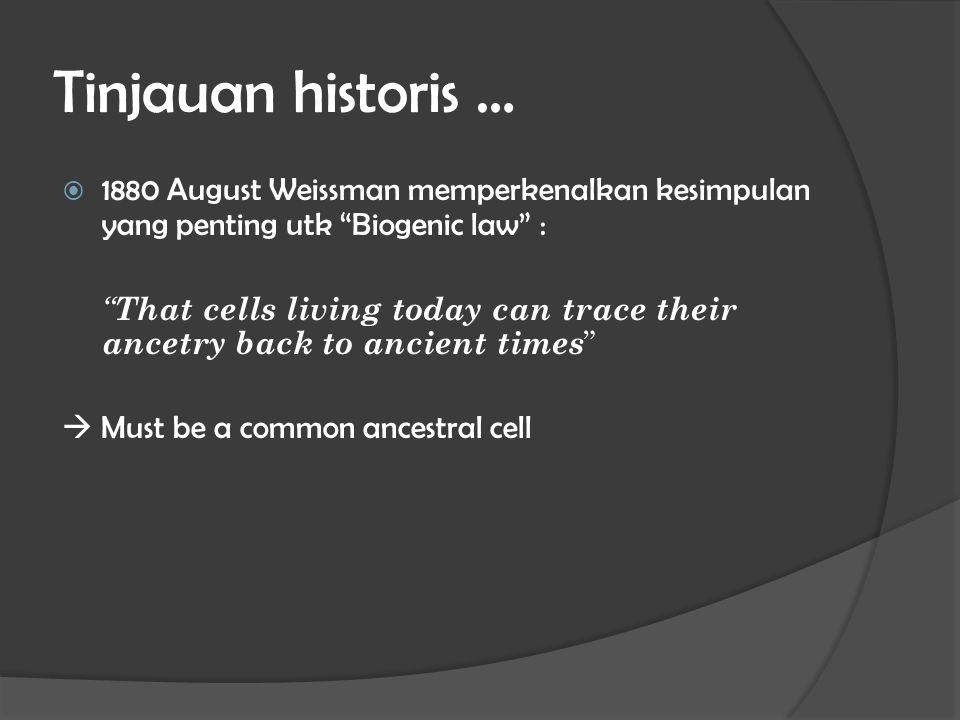Tinjauan historis … 1880 August Weissman memperkenalkan kesimpulan yang penting utk Biogenic law :
