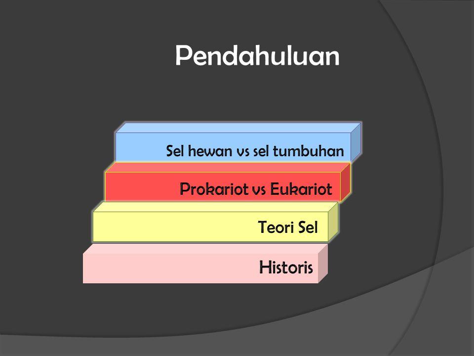 Pendahuluan Historis Prokariot vs Eukariot Teori Sel