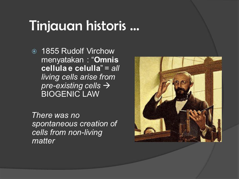 Tinjauan historis … 1855 Rudolf Virchow menyatakan : Omnis cellula e celulla = all living cells arise from pre-existing cells  BIOGENIC LAW.