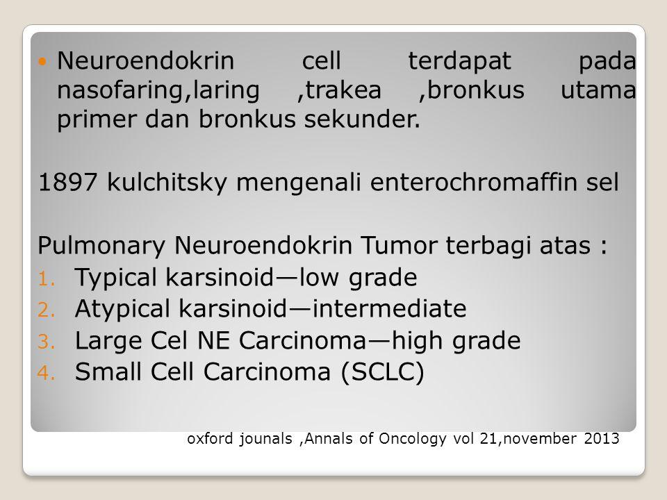 Neuroendokrin cell terdapat pada nasofaring,laring ,trakea ,bronkus utama primer dan bronkus sekunder.