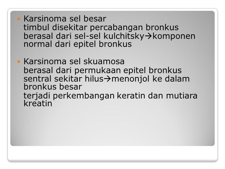 Karsinoma sel besar timbul disekitar percabangan bronkus. berasal dari sel-sel kulchitskykomponen normal dari epitel bronkus.