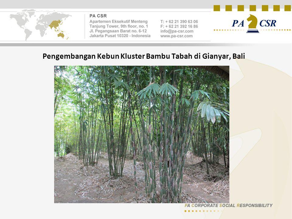 Pengembangan Kebun Kluster Bambu Tabah di Gianyar, Bali