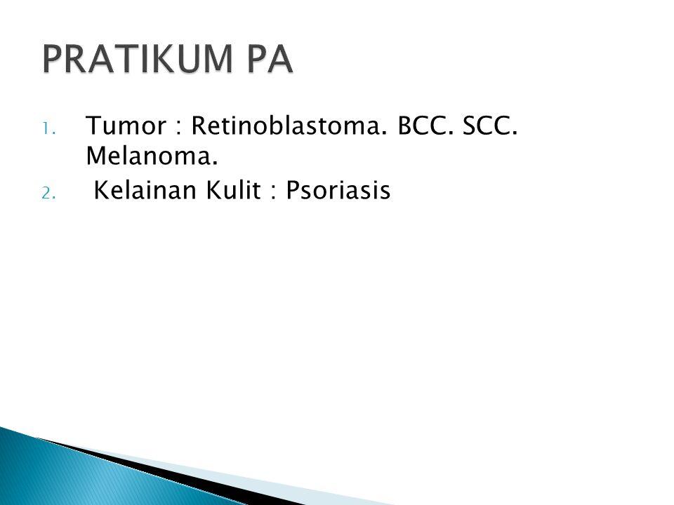 PRATIKUM PA Tumor : Retinoblastoma. BCC. SCC. Melanoma.