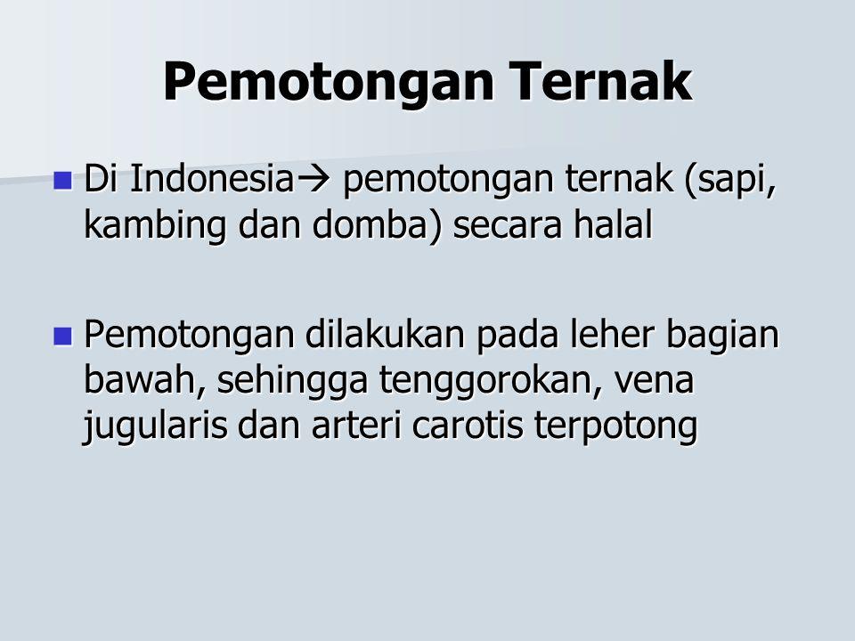 Pemotongan Ternak Di Indonesia pemotongan ternak (sapi, kambing dan domba) secara halal.