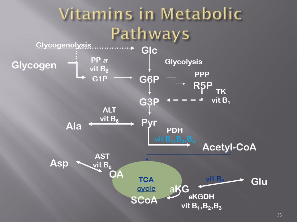 Vitamins in Metabolic Pathways