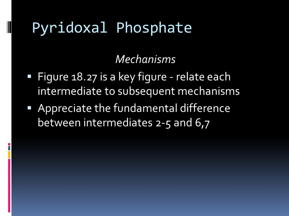 Pyridoxal Phosphate Mechanisms