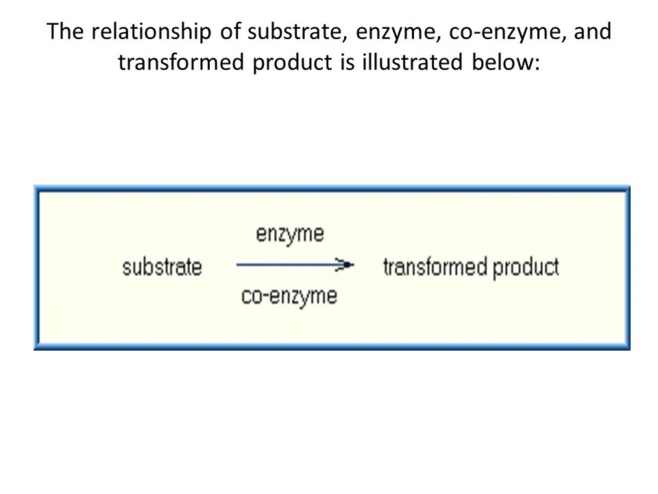 The relationship of substrate, enzyme, co-enzyme, and transformed product is illustrated below: