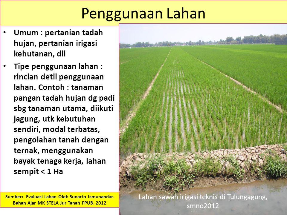 Lahan sawah irigasi teknis di Tulungagung, smno2012
