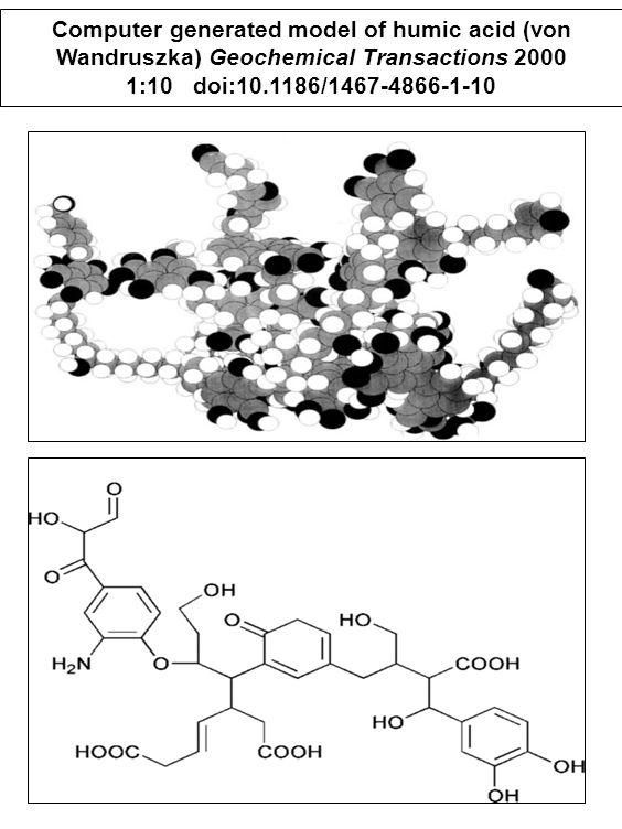 Computer generated model of humic acid (von Wandruszka) Geochemical Transactions 2000 1:10 doi:10.1186/1467-4866-1-10