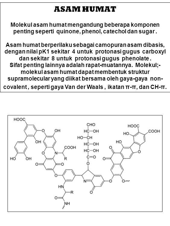ASAM HUMAT Molekul asam humat mengandung beberapa komponen penting seperti quinone, phenol, catechol dan sugar .