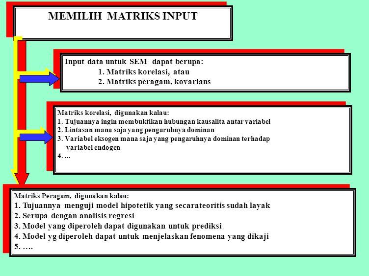 MEMILIH MATRIKS INPUT Input data untuk SEM dapat berupa: