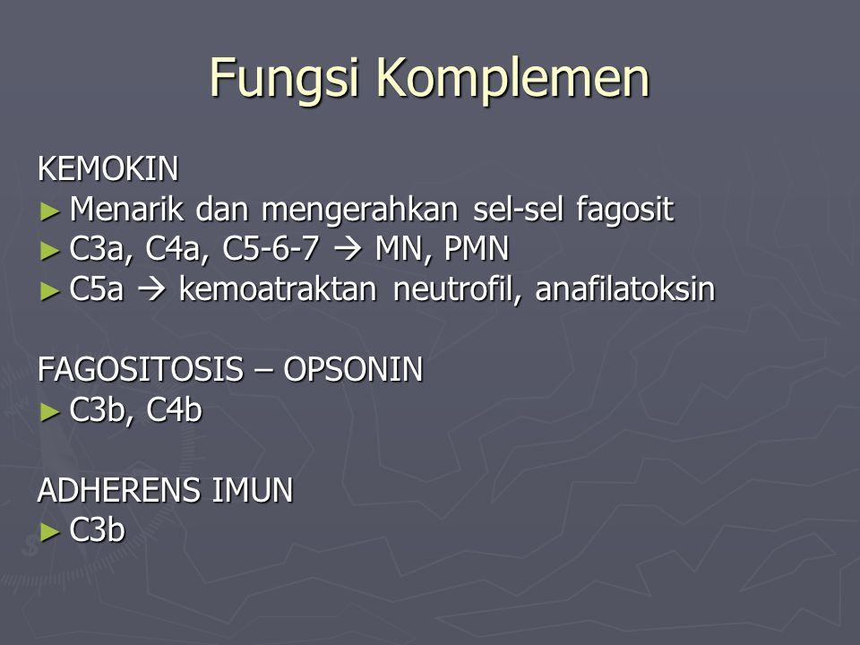 Fungsi Komplemen KEMOKIN Menarik dan mengerahkan sel-sel fagosit
