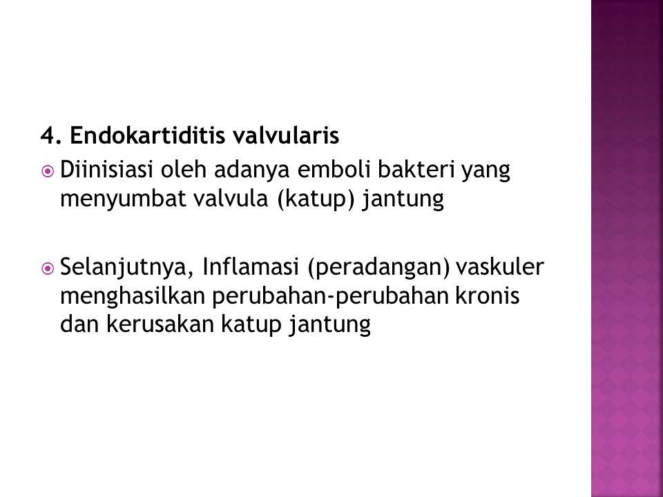 4. Endokartiditis valvularis