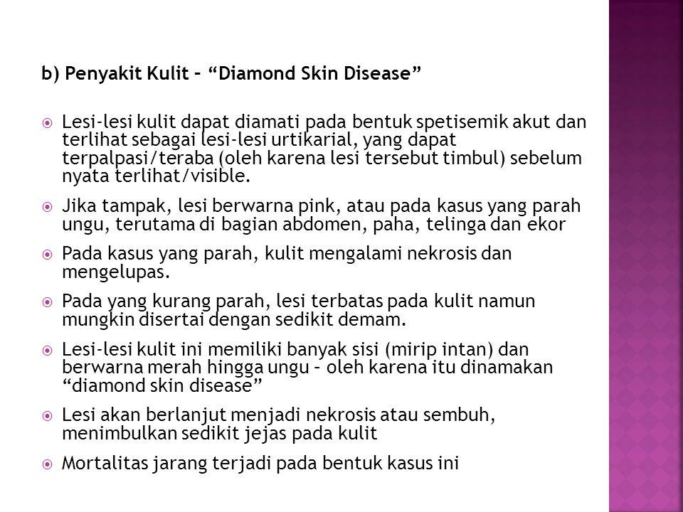 b) Penyakit Kulit – Diamond Skin Disease