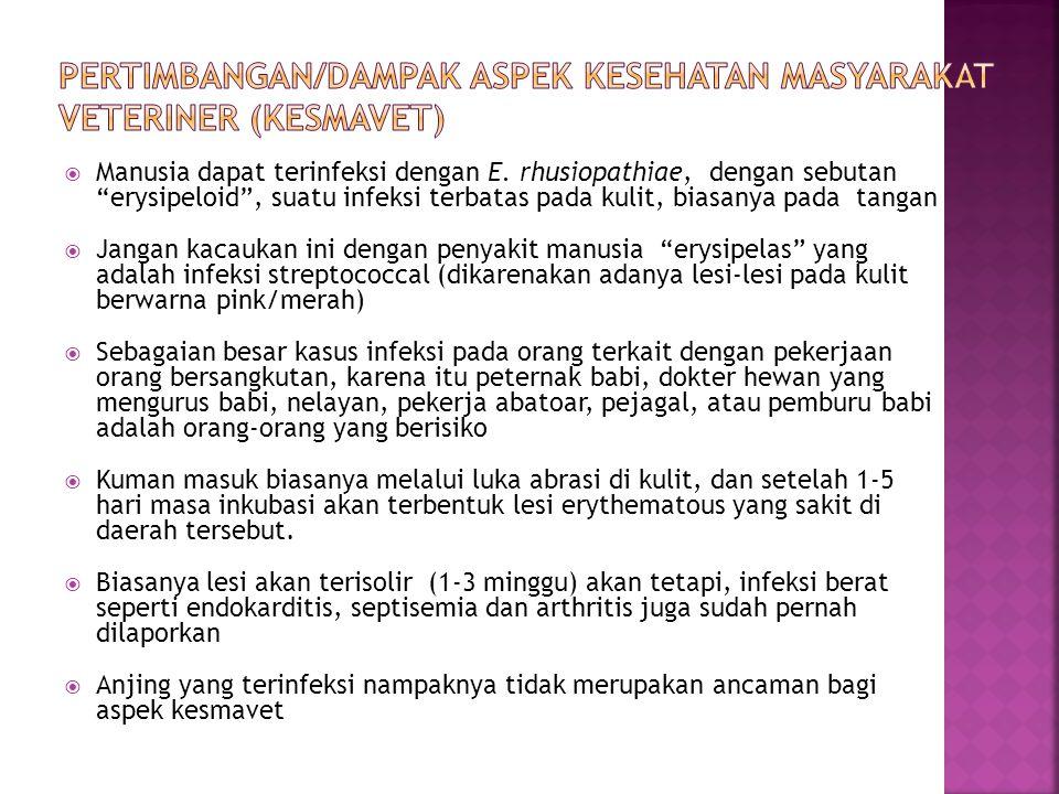 Pertimbangan/dampak aspek Kesehatan Masyarakat Veteriner (Kesmavet)